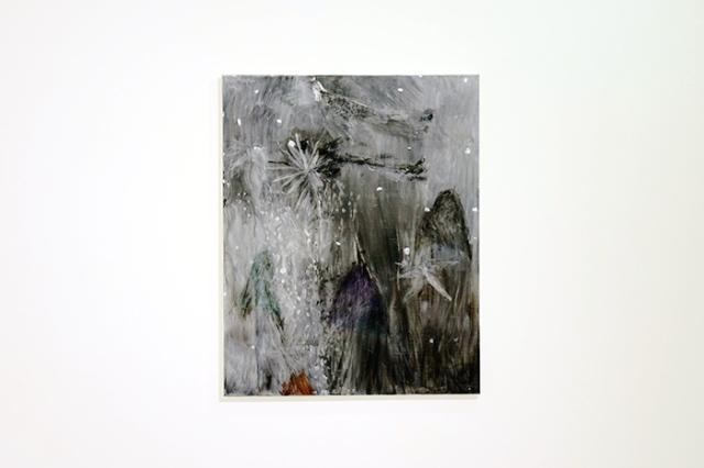 kodama gallery 6